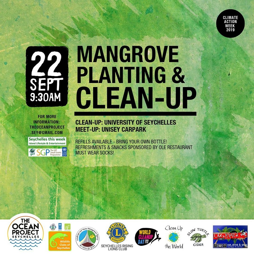 Mangrove Planting & Clean-up